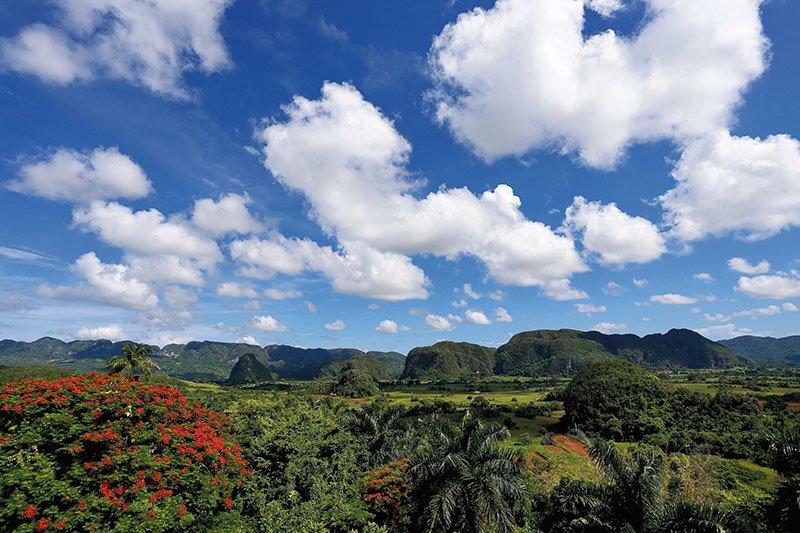 Viva Cuba! Culture and Conservation