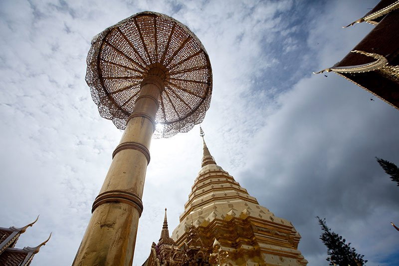Elephants and the Amazing Thailand Adventure
